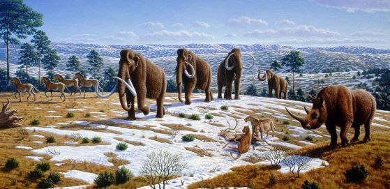 Artwork of fauna during the Pleistocene epoch in northern Spain, by Mauricio Antón, 2004, wikipedia